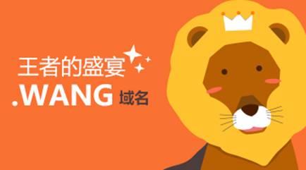 .wang新顶级域名后缀怎么样